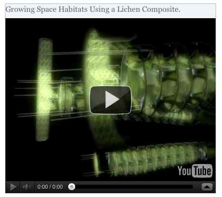 Image to go with video of: Growing Space Habitats Using a Lichen Composite.